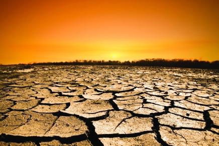بردان؟؟ قد لا يطول الأمر.. 2014 أكثر السنوات حرارة منذ134عاماً