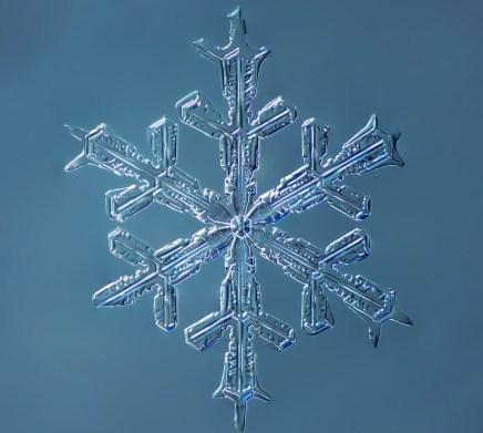 الألبوم الأبيض: 14 صورة مبهرة لرقائقالثلج