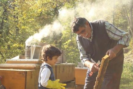 مربي النحل: مأساة الأكراد والحرب في فيلموثائقي