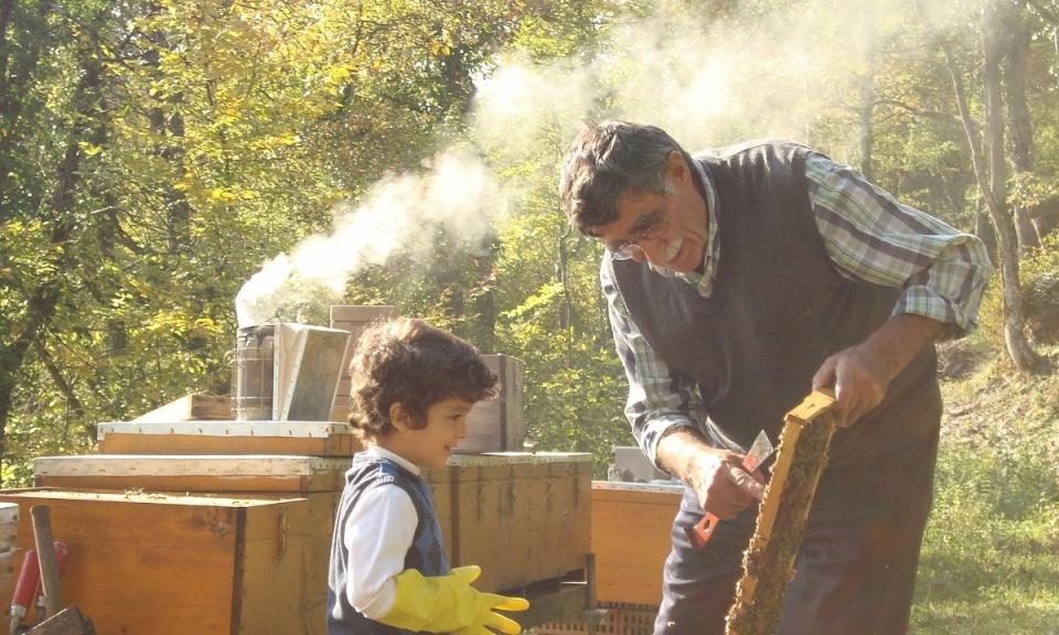 """زووم إن: """"مربي النحل"""" من جبال كردستان تركيا إلى الألب السويسرية"""