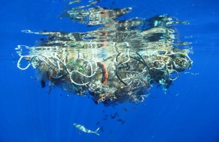 كمية البلاستيك في المحيط يمكن أن تفوق كمية الأسماك بحلول2050