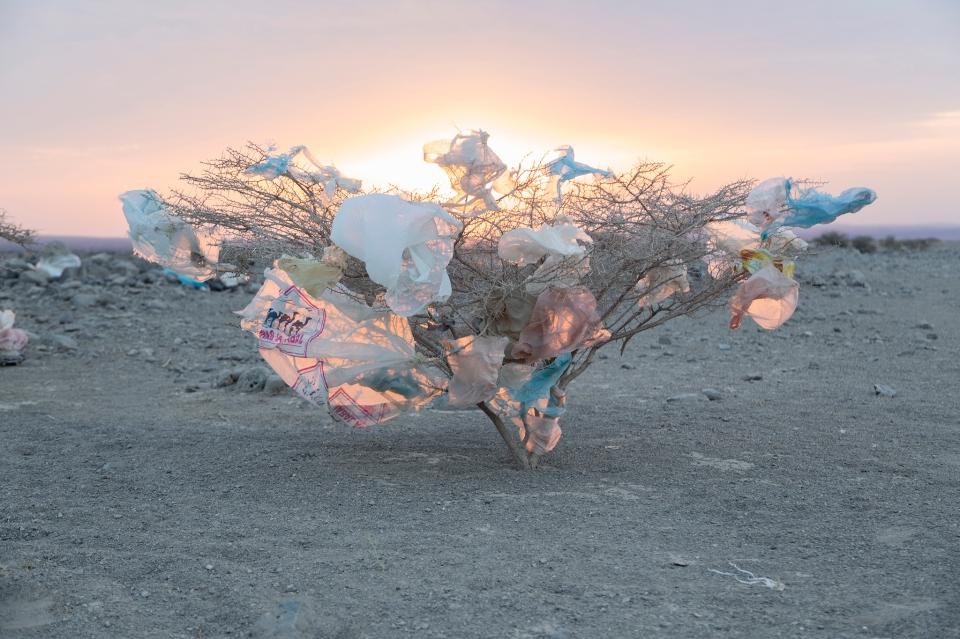 plastic desert environment