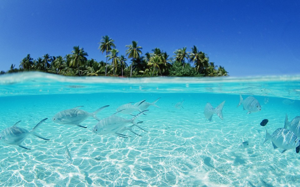maldives_13