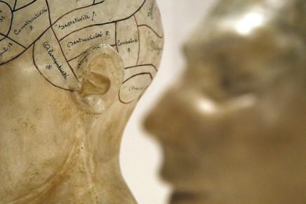 هل التحدّثُ بأكثر من لغة يطوِّر قدراتِناالعقلية؟