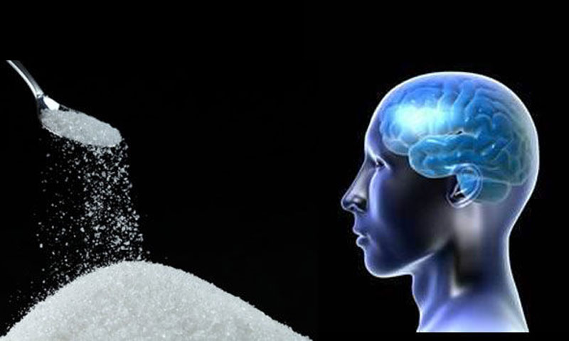 Sugar-and-brain