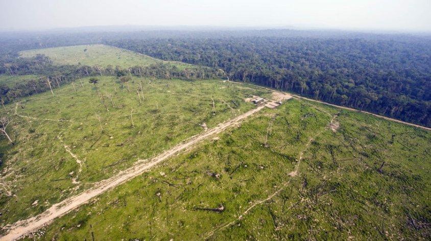 brazil-deforestation_wide-cd5a6479a174eca74d436993f42d07e7e09a27a4-s900-c85