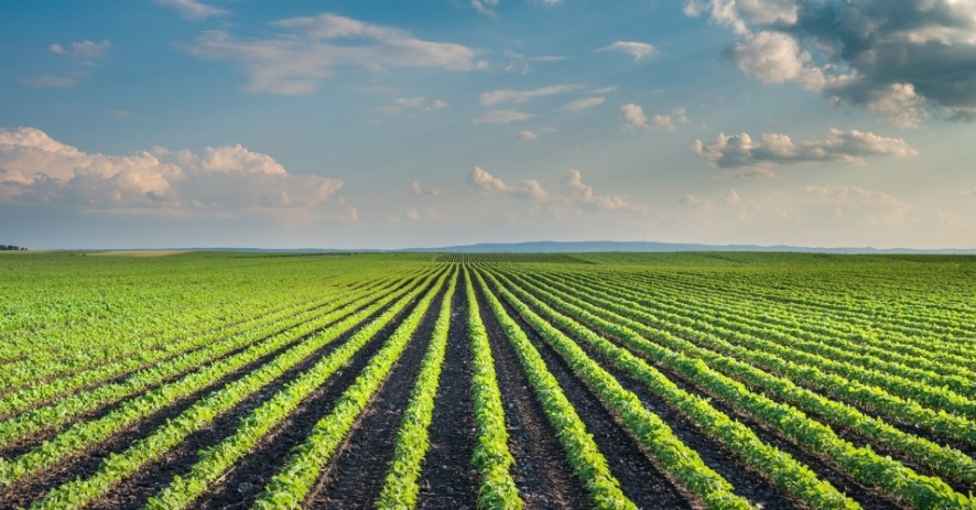world_bank_farming