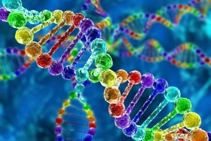أفضل كتاب عن الجنس البشري: كل ما تحتاج إلى معرفته عنالجينوم