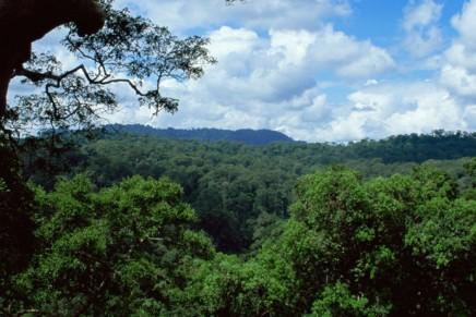 هل يمكن أن نستغني عن نصف الكرة الأرضية من أجلالطبيعة؟