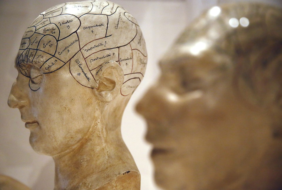 Plaster phrenological models of heads, showing different parts of the brain, are seen at an exhibition at the Wellcome Collection in London